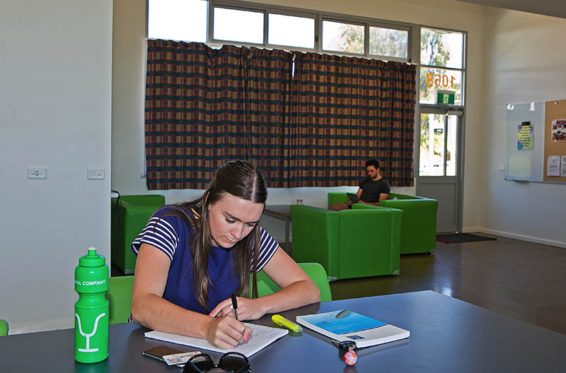 Students studying and relaxing in the common area